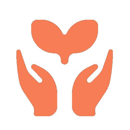 Transparent logo IKON Lokal Verdiskapning Nyli